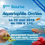 5 ème Bourse Aquariophile à Orchies (59), le dimanche 29 mai 2016