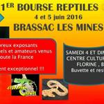 1 ère Bourse Reptiles 63 à Brassac les Mines (63), du samedi 04 au dimanche 05 juin 2016