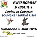 Expo-BExpo-Bourse d'oiseaux, lapins et cobayes à Souvigné sur Sarthe (72), le dimanche 05 juin 2016ourse d'oiseaux, lapins et cobayes à Souvigné sur Sarthe (72), le dimanche 05 juin 2016