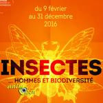 """Exposition """"Insectes...Hommes et Biodiversité"""" à Poitiers (86), du 09 février au 31 décembre 2016"""