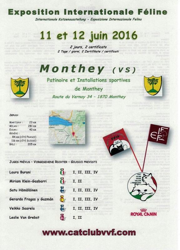 Exposition Internationale Féline à Monthey (Suisse), du samedi 11 au dimanche 12 juin 2016