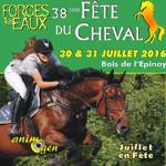 38 ème Fête du Cheval à Forges les Eaux (76), du samedi 30 au dimanche 31 juillet 2016