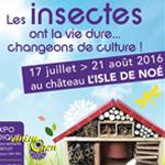 Exposition : Les insectes ont la vie dure,changeons de culture ! à L'Isle de Noé (32), du 17 juillet au 21 août 2016