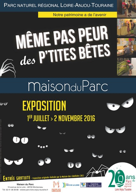 """Exposition """"Même pas peur des p'tites bêtes"""" à Montsoreau (49), du 1 er juillet au 02 novembre 2016"""