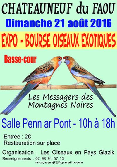 Expo-Bourse d'oiseaux exotiques à Châteauneuf du Faou (29), le dimanche 21 août 2016