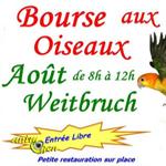 Bourse aux oiseaux à Weitbruch (67), le dimanche 28 août 2016