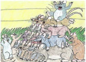 Comportement : pourquoi les rats vivant en groupe dorment-ils entassés les uns sur les autres ?