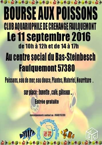 Bourse aux poissons à Faulquemont (57), le dimanche 11 septembre 2016