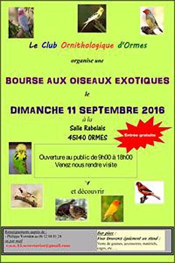 Bourse aux oiseaux exotiques à Ormes (45), le dimanche 11 septembre 2016