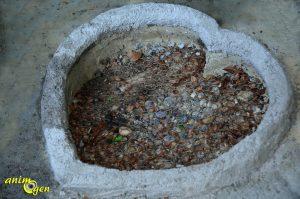 Fabriquez une volière pour vos colombes et tourterelles
