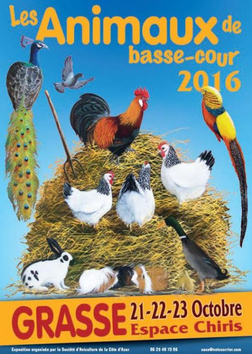 20 ème Exposition Internationale d'Animaux de basse-cour à Grasse (06), du vendredi 21 au dimanche 23 octobre 2016