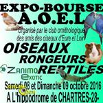 Expo-Bourse d'oiseaux, rongeurs et reptiles à Chartres (28), du samedi 08 au dimanche 09 octobre 2016