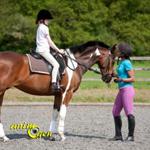 Première leçon d'équitation : l'arrivée dans le manège et le début du cours