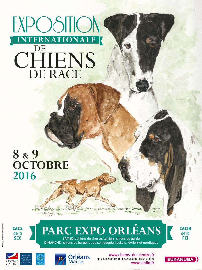 Exposition Internationale de Chiens de race à Orléans (45), du samedi 08 au dimanche 09 octobre 2016