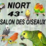 43 ème Salon des oiseaux et bourse aux NAC, reptiles, rongeurs à Niort (79), du samedi 05 au dimanche 06 novembre 2016