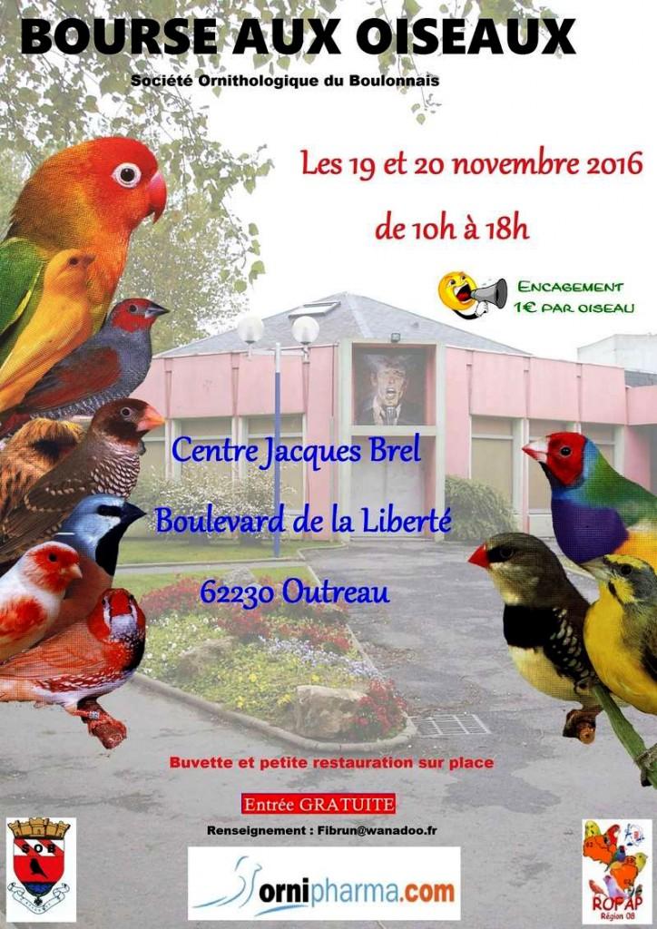 Bourse aux oiseaux à Outreau (62), du samedi 05 au dimanche 06 novembre 2016