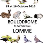 42 ème Exposition Nationale Avicole à Lomme (59), du samedi 15 au dimanche 16 octobre 2016
