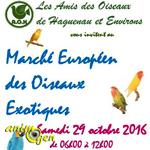 Marché européen des oiseaux à Haguenau (67), le samedi 29 octobre 2016