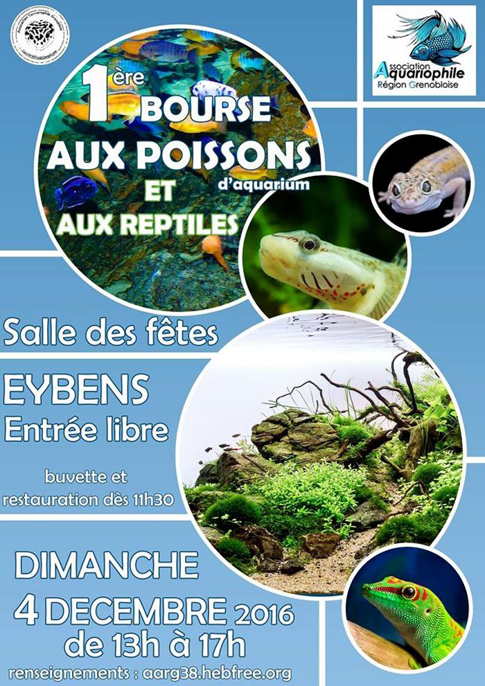 1 ère Bourse aux poissons d'aquarium et aux reptiles à Eybens (38), le dimanche 14 décembre 2016