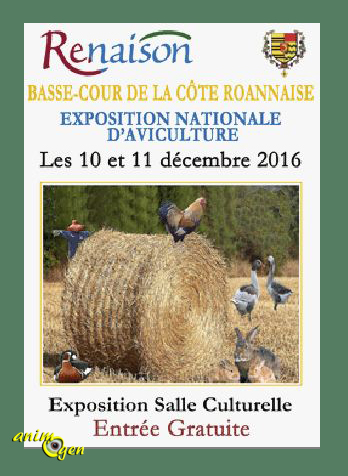 6 ème Exposition Nationale d'Aviculture à Renaison (42), du samedi 10 au dimanche 11 décembre 2016