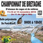 Championnat de Bretagne d'oiseaux de cage et de volière à Pont Scorff (56), du vendredi 11 au dimanche 13 novembre 2016