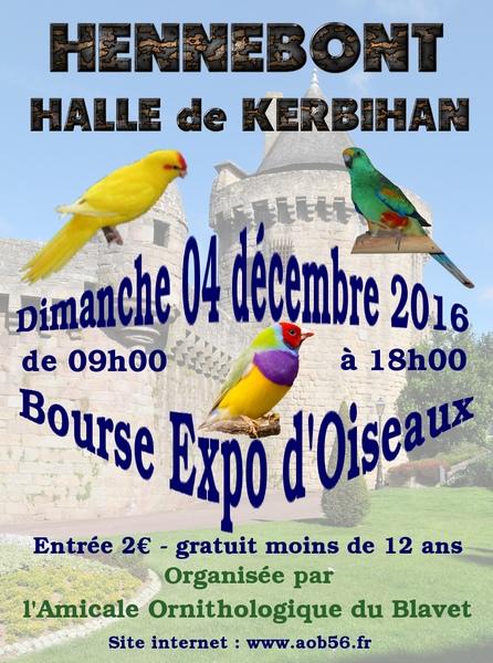 Bourse Expo d'oiseaux à Hennebont (56), le dimanche 04 décembre 2016