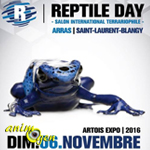 Reptile day (Salon international terrariophile) à Arras (62), le dimanche 06 novembre 2016