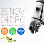 Salon du Cheval à Paris (93), du samedi 26 novembre au dimanche 04 décembre 2016