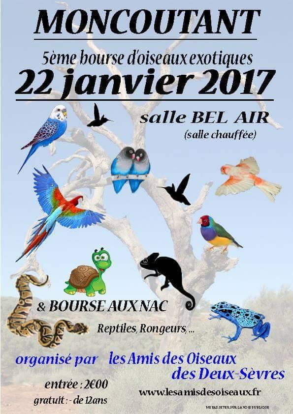 5 ème Bourse d'oiseaux exotiques, reptiles et rongeurs à Moncoutant (79), le dimanche 22 janvier 2017