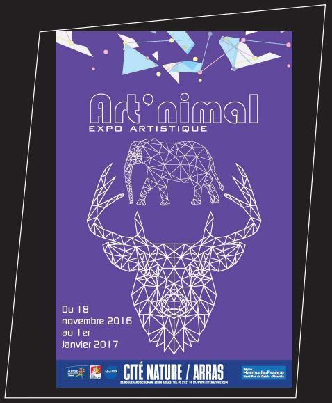 Exposition Art' nimal à Arras (62), jusqu'au 31 décembre 2016