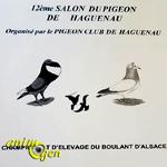 12 ème Salon du pigeon de Haguenau (67), du samedi 17 au dimanche 18 décembre 2016