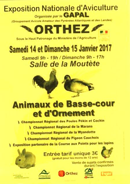 Exposition Nationale d'Aviculture à Orthez (64), du samedi 14 au dimanche 15 janvier 2017