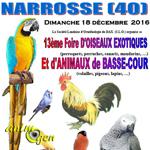 13 ème Foire d'oiseaux exotiques et d'animaux de basse-cour à Narrosse (40), le dimanche 18 décembre 2016