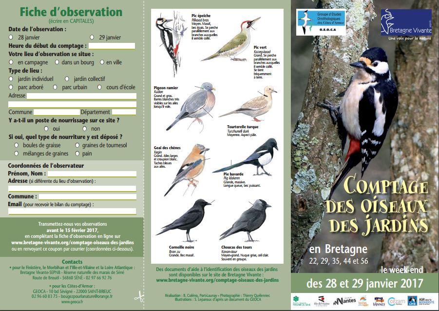 Comptage régional des oiseaux des jardins en Bretagne, du samedi 28 au dimanche 29 janvier 2017