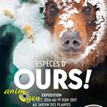 """Exposition """"Espèces d'Ours"""" à Paris (75), du 12 octobre 2016 au 19 juin 2017"""