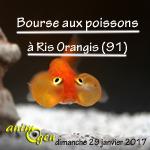 Bourse aux poissons à Ris-Orangis (91) , le dimanche 29 janvier 2017