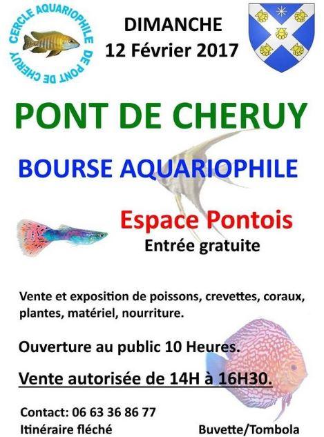 Bourse aux poissons à Pont de Cheruy (38), le dimanche 12 février 2017