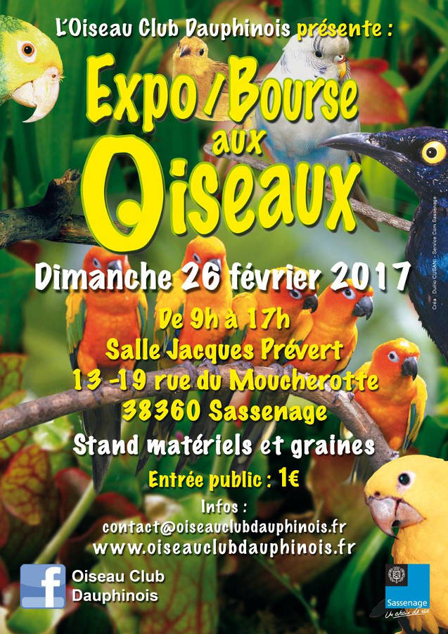 expo bourse aux oiseaux sassenage 38 le dimanche 26 f vrier 2017 animogen. Black Bedroom Furniture Sets. Home Design Ideas