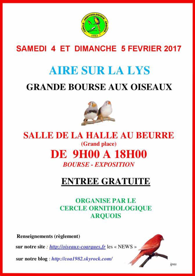 Grande bourse aux oiseaux à Aire sur la Lys (62), du samedi 04 au dimanche 05 février 2017