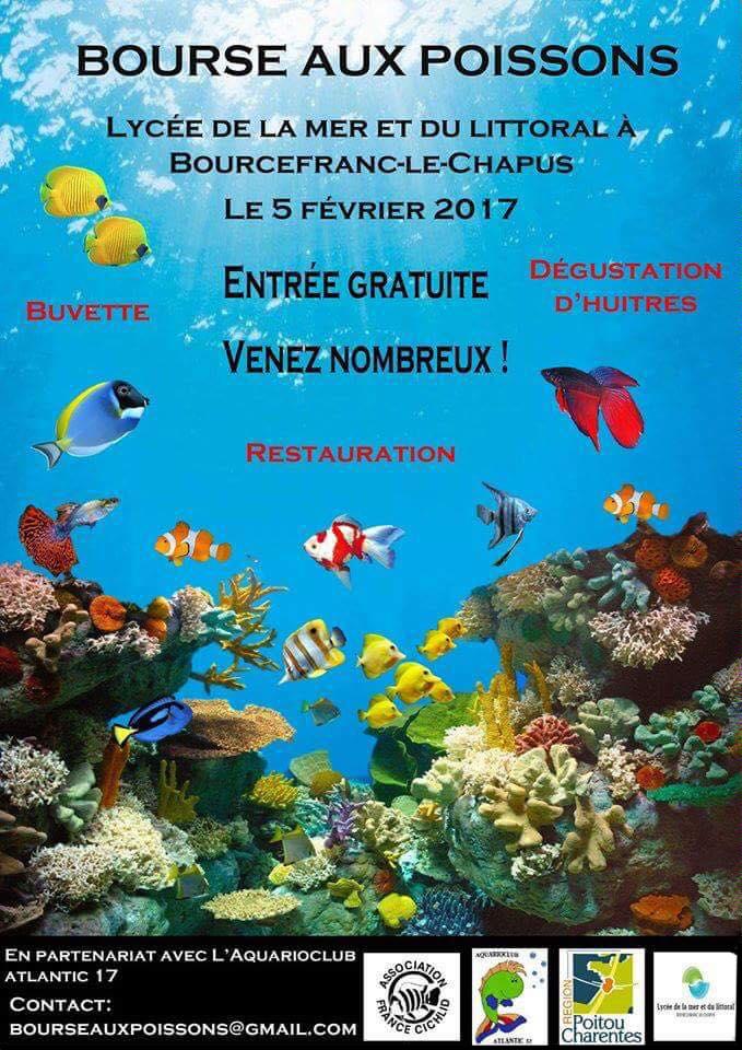 Bourse aux poissons à Bourcefranc le Chapus (17), le dimanche 05 février 2017