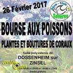 Bourse aux poissons à Dossenheim-sur-Zinsel (67), le dimanche 26 février 2017
