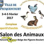 37 ème Salon des Animaux à Pecquencourt (59), les vendredi 03, samedi 04 et dimanche 05 février 2017