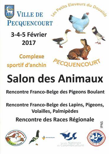 37 me salon des animaux pecquencourt 59 les vendredi for Salon des animaux toulouse 2017