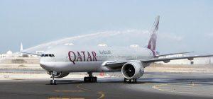 Une escadrille de 80 faucons voyage sur Qatar Airways