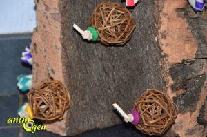 Test : le Cork Sheet, un jouet fabuleux pour nos perroquets