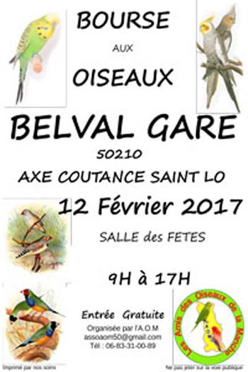 Bourse aux oiseaux à Belval (50), le dimanche 12 février 2017
