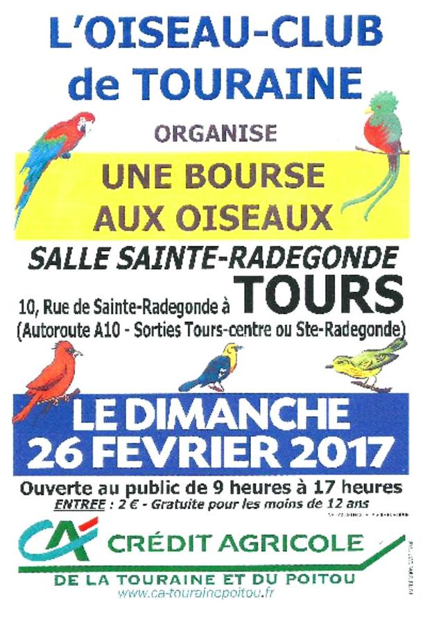 Bourse aux oiseaux à Tours (37), le dimanche 26 février 2017