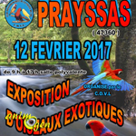 9 ème Exposition-Bourse d'oiseaux exotiques à Prayssas (47), le dimanche 12 février 2017