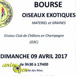 Bourse oiseaux exotiques à Sarry (51), le dimanche 09 avril 2017