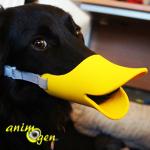 Clouez le bec à vos chiens avec le Quack Muzzle d'Oppo